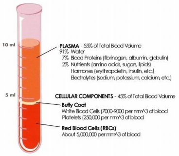 Peripheral blood content.